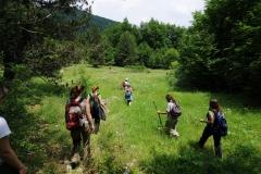 Πεζοπορία στα δάση του Γεωπάρκου - ΧΑΡΗΤΑΚΗΣ ΠΑΠΑΙΩΑΝΝΟΥ/ HARITAKIS PAPAIOANNOU